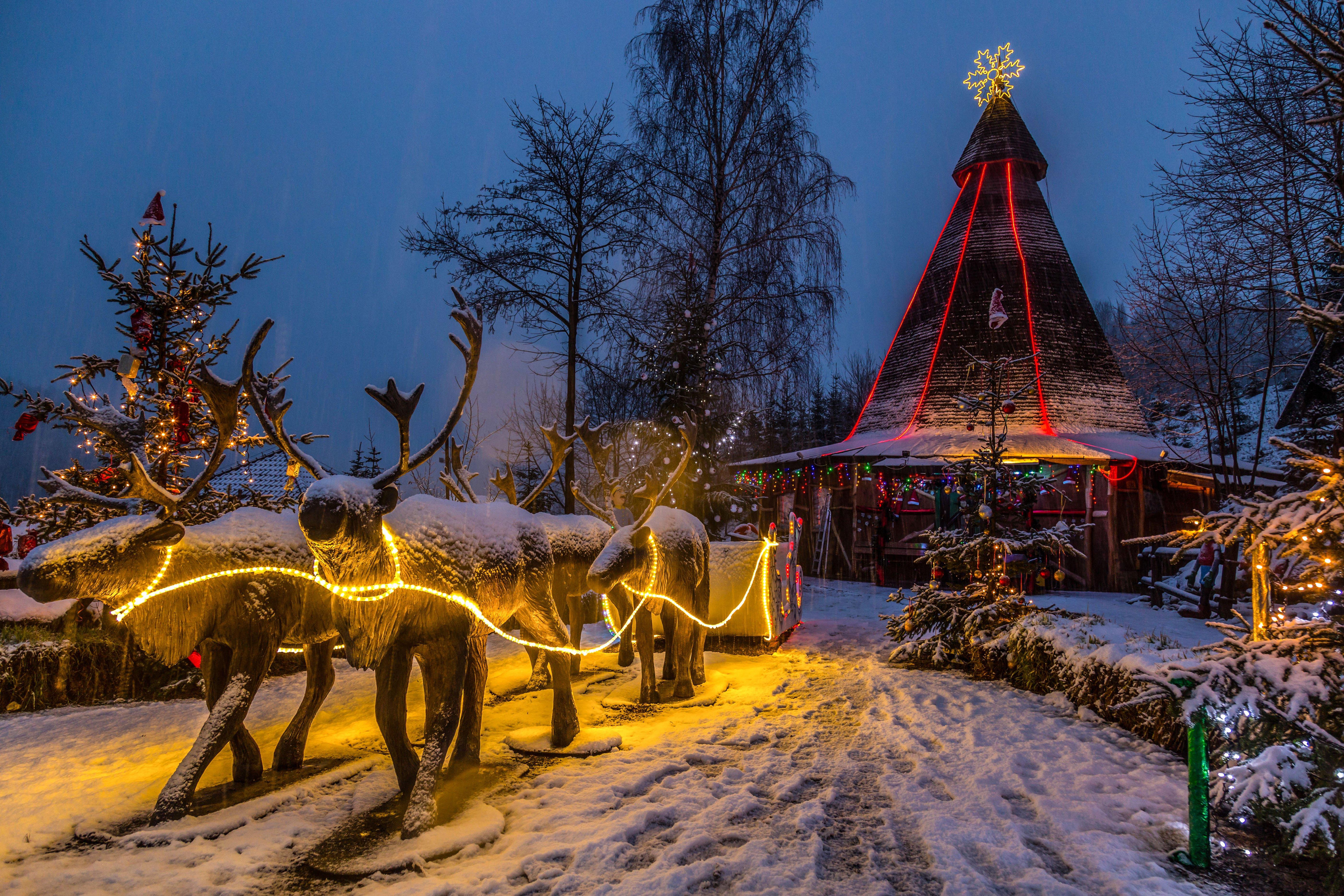 Masywnie Wioska Świętego Mikołaja w Bałtowie - Stacja narciarska Szwajcaria YA01